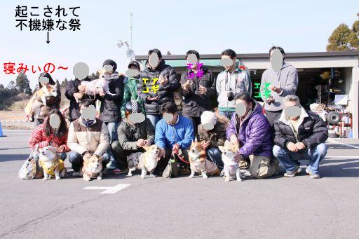 20100104-9A.jpg