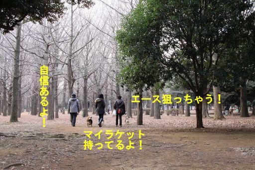 20100111-21.jpg
