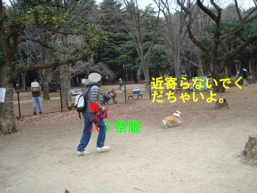 20100111-4.jpg