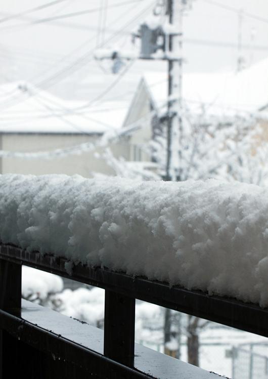 2012年の初雪~