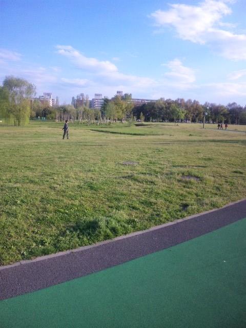 大宮公園5