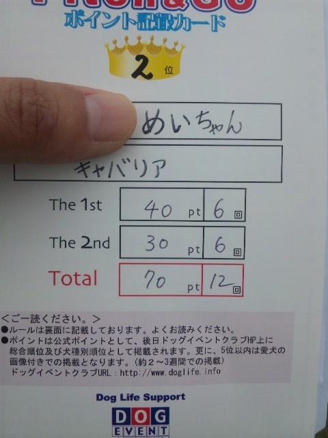 SH3D1786.jpg
