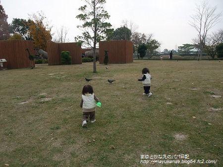 PICT0006_20091130215039.jpg