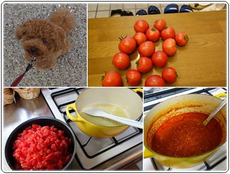 トマトソースcats