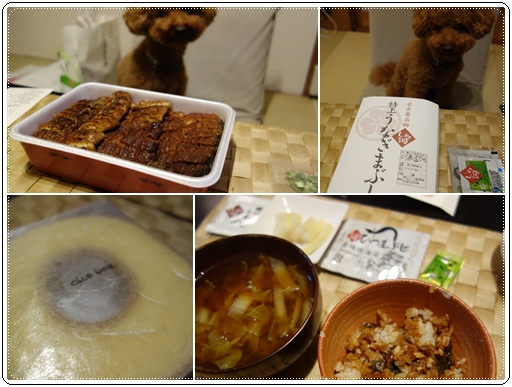 名古屋土産cats