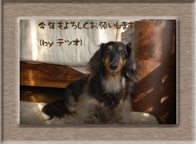 写真26(テツオ)2