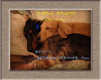 写真28(おねむ)