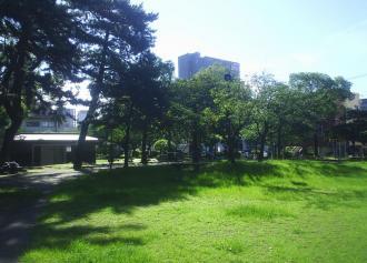 03 平田公園の木々 (30%)
