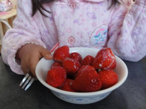 イチゴ食事中
