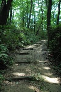 ハイキング道路