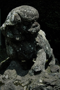 貫井神社の狛犬
