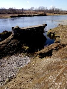多摩川 橋桁の残骸