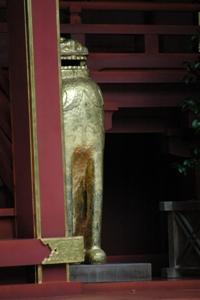 大國魂神社本殿の狛犬