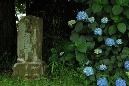 道祖神と紫陽花
