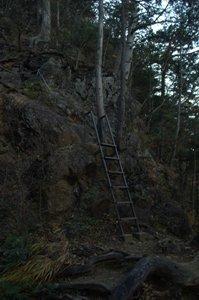登山道の梯子