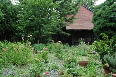 法性院の庭と本堂