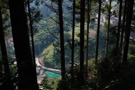 登山道俯瞰2