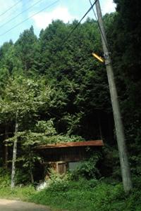 廃屋と電柱
