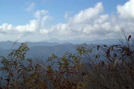 大岳山からの眺め