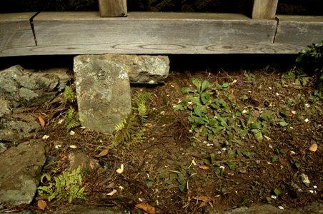 大岳神社白馬神社