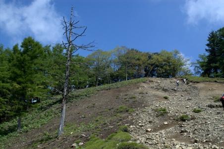 ガラ石の道