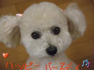 繝。繝ュ繝・ぅ繝シ+333_convert_20110530171012
