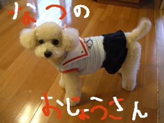 繝。繝ュ繝・ぅ繝シ+339_convert_20110610194339