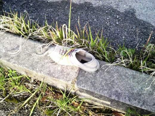 4月29日のゴミ(靴)
