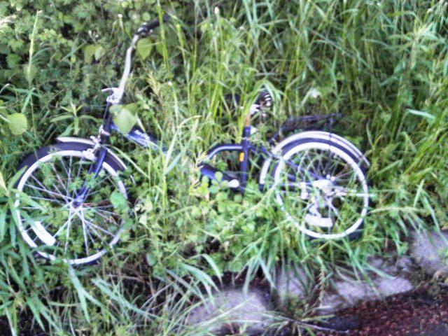 4月29日のゴミ(自転車)