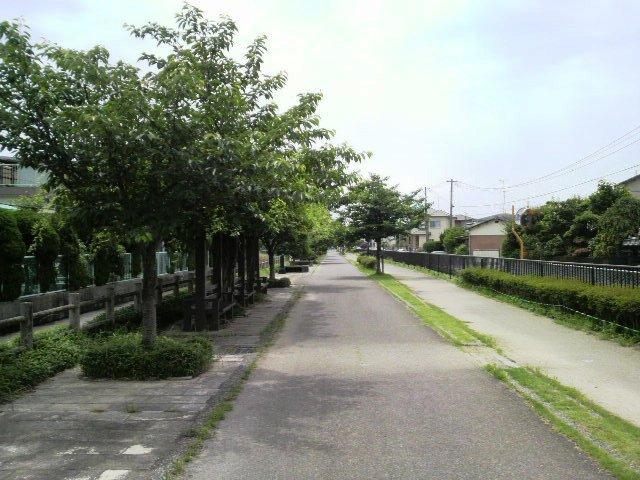 八代緑の回廊線