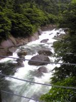 屋久島小杉谷1
