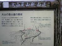 大山夏山登山道2