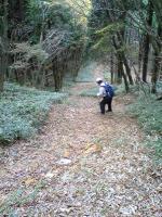 徳島県国見山登山道12