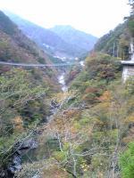 奥祖谷渓谷の絶景1