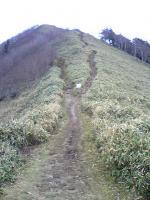 徳島県剣山系一ノ森登山道5
