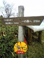 徳島県剣山系一ノ森登山道3