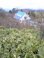 剣山系一ノ森頂上からの眺望1