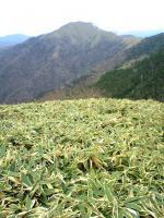 剣山系一ノ森頂上からの眺望3