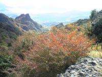 寒霞渓頂上からの眺望1