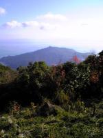 星ケ城山頂上の風景2