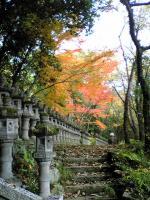 小豆島笠ケ滝1