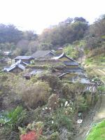 大楠と映画ロケ地の島4