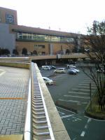 仙台のお昼は牛タンのコース2