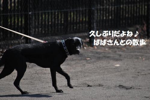 DSC_2126.jpg