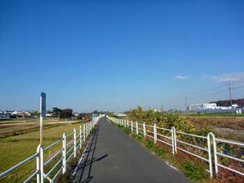20101205021.jpg