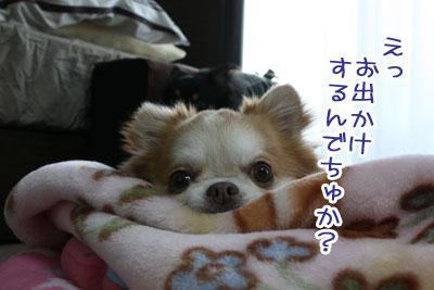 01_20100303005203.jpg