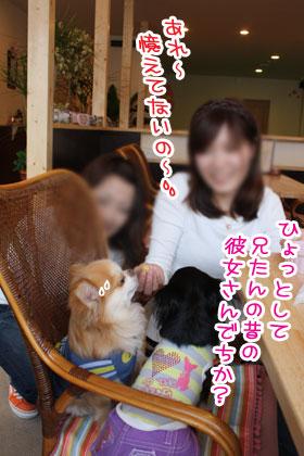 05_20100301113537.jpg