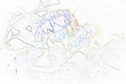 05_20100911101052.jpg