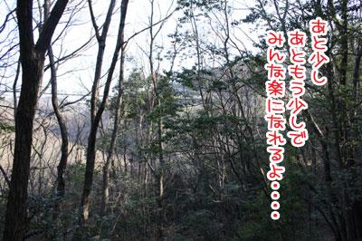 07_20100213144756.jpg