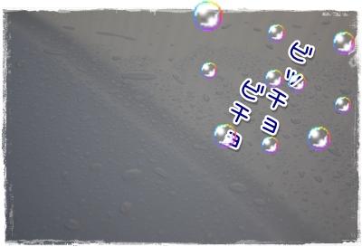 07_20100410143532.jpg